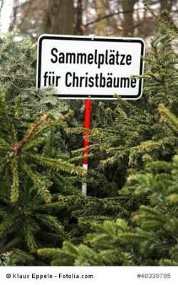 weihnachtsbaum weihnachten in deutschland. Black Bedroom Furniture Sets. Home Design Ideas